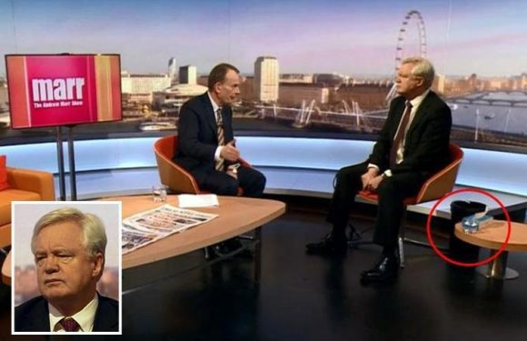 Brexit Secretary David Davis forced to take a SICK BUCKET to TV interview after getting food poisoning from a dodgy sarnie