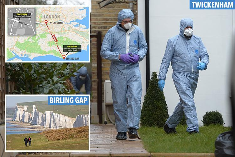 Mum found stabbed to death at home after partner and two kids, 7 and 10, found dead at cliffs 90 miles away
