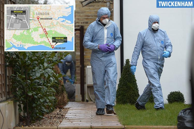 Mum found stabbed to death after partner and kids were found dead at cliffs