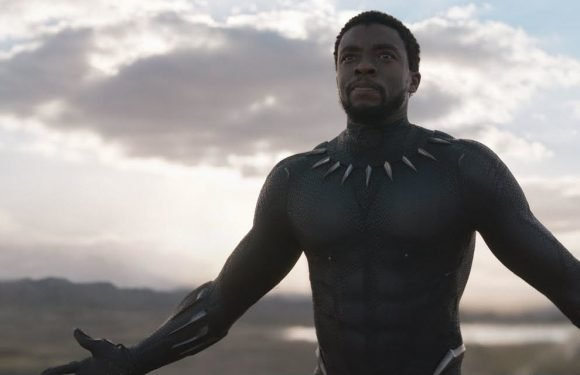 Marvel's Black Panther is officially the highest grossing superhero movie of all time in the US