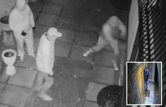 Moment armed gang break into family home where they held boy, 11, prisoner and sprayed 'acid' in granddad's face
