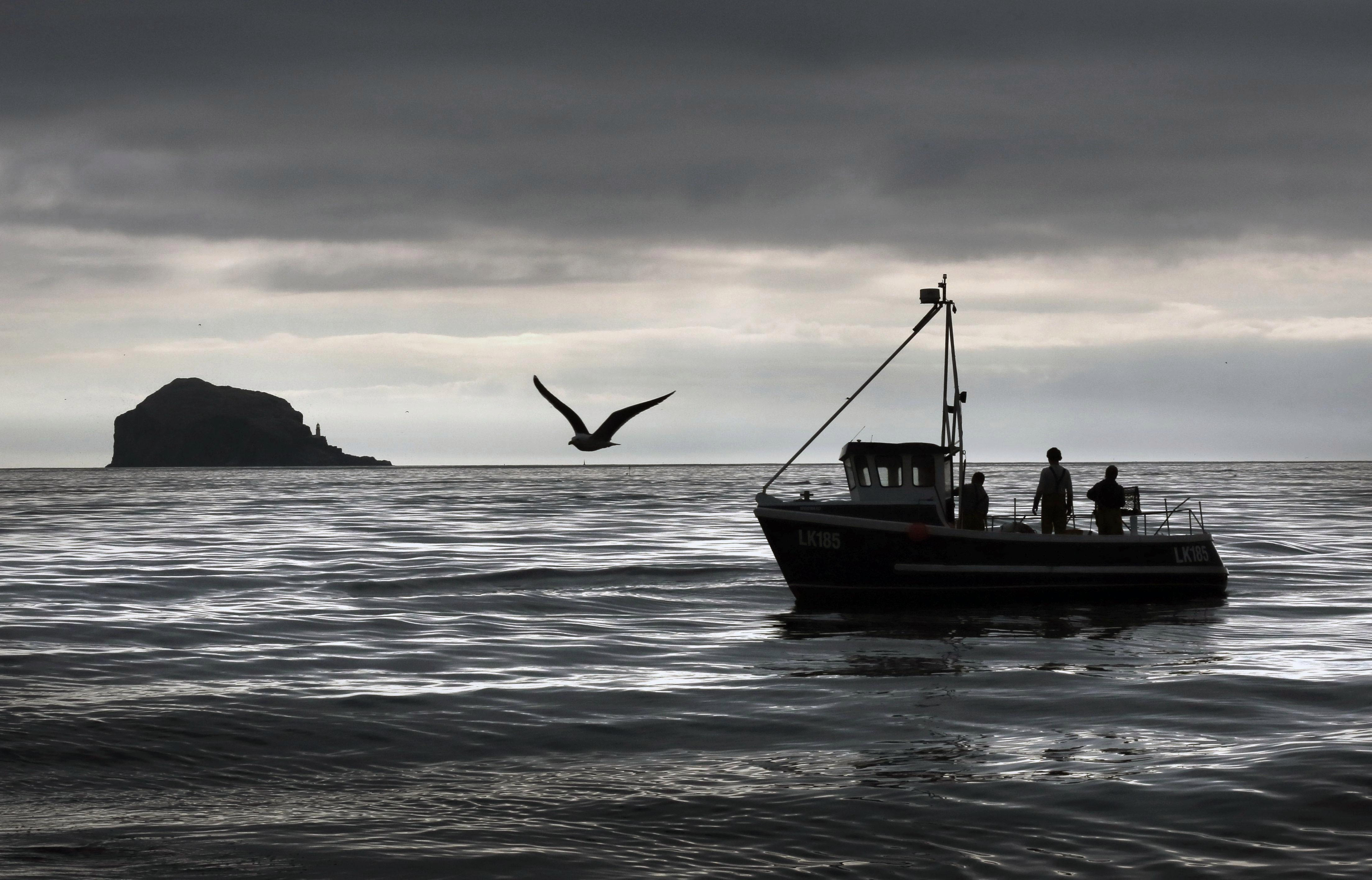Tory MPs hit out at Brexit transition deal for a 'betrayal' of UK fishermen likening it to trying to sell a 'pint of cold sick'