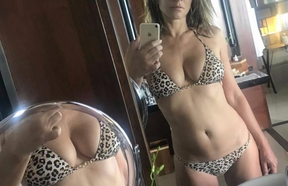 Liz Hurley thrills fans as she gives them a close up of her boobs with new sexy selfie