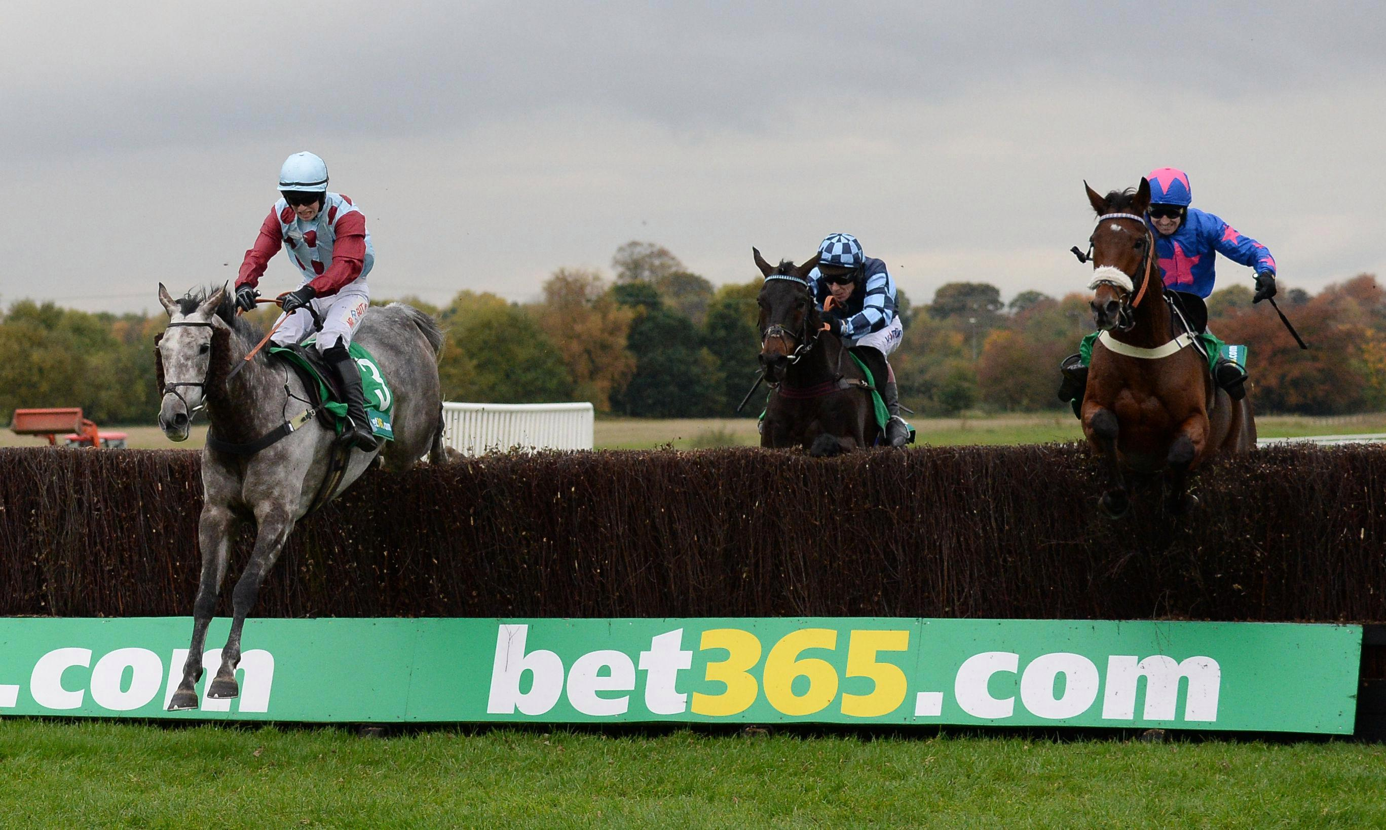 Horse racing tips: Newcastle and Wetherby – Templegate's betting preview for the racing this Tuesday, March 20 – The Sun