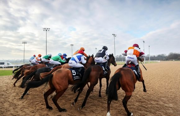 Horse racing tips: Wincanton, Warwick, Wolverhampton and Newcastle – Templegate's betting preview for the racing this Wednesday, March 28