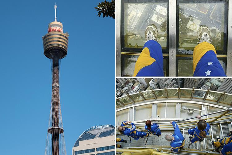 Woman plummets 900ft to her death 'after removing harness' during skywalk tour on Sydney's Centrepoint Tower