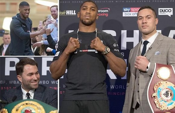 Joshua vs Parker: AJ says he'd stick his last £20 him knocking out Kiwi rival in Cardiff… as punters rush to back the underdog