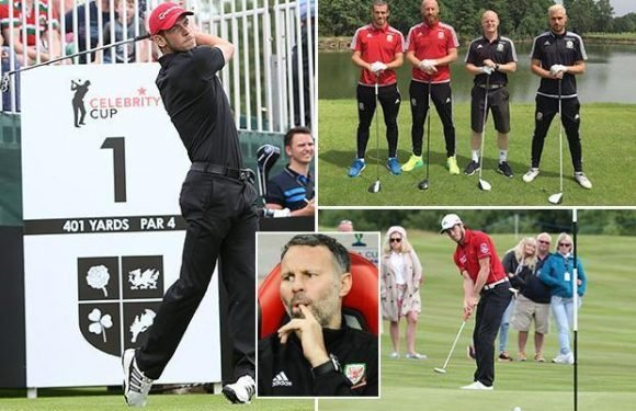 Gareth Bale and Wales team-mates banned from playing GOLF by boss Ryan Giggs over injury fears