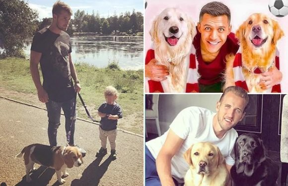 Lionel Messi and Senor Hulk, Alexis Sanchez and Atom and Humber – we look at footballers' dogs to celebrate National Puppy Day