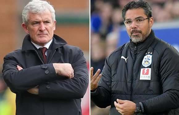 David Wagner still wanted by Southampton… despite Saints only appointing Mark Hughes as boss this month