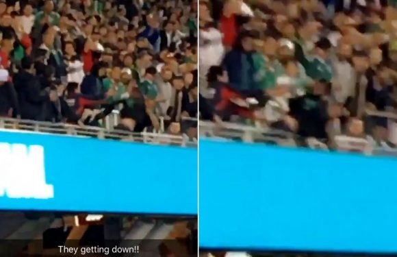 Watch the incredible moment supporters clash during Mexico vs Iceland game, with one fan trying to throw another over the barriers