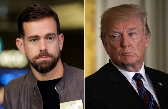 Twitter CEO rips Trump for 'thoughts and prayers' after YouTube shooting