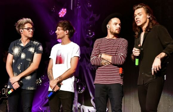 Liam Payne just dropped a massive hint about a One Direction reunion