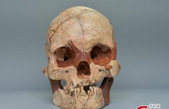 Tomb raiders in China discover 16,000-year-old human skull