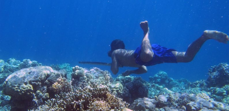 Tribe of 'fish people' boast extra big spleens for deep sea diving