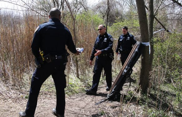 Teen found dead in park was homicide victim: cops