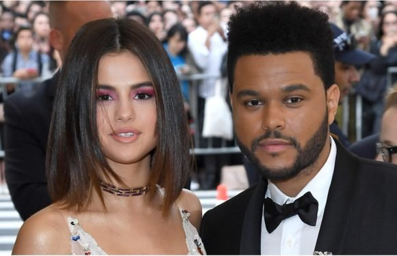Yikes! Did The Weeknd Lie About Almost Donating a Kidney to Selena to Get Attention?
