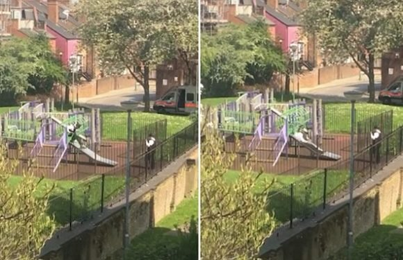 Two Met police officers are spotted playing on a slide while on duty
