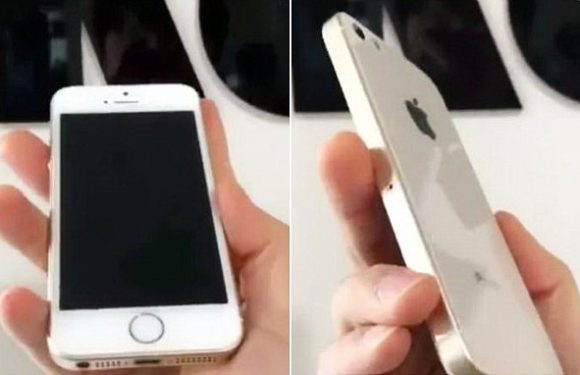 Leaked images appear to show new iPhone SE 2 with wireless charging
