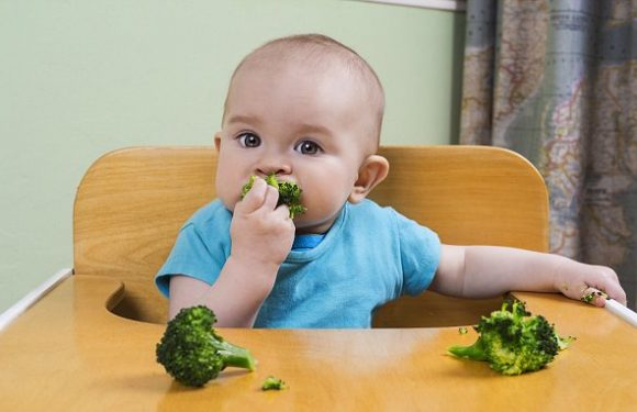 Babies should be fed broccoli and spinach to wean them off milk