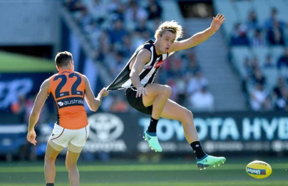 Returns for Pies trio still up in the air