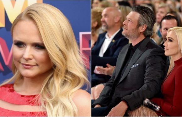 "Miranda Lambert Spoke About Her ""Broken Heart"" at the ACMs Right in Front of Blake Shelton"
