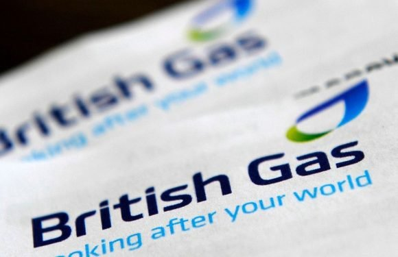British Gas ditches freephone number for customers while hiking up energy bills