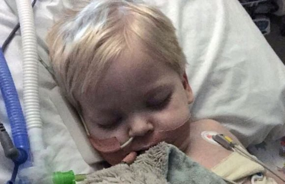 Boy, 2, wakes up from coma as devastated family agree to switch off life support