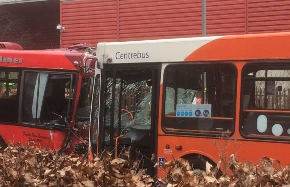 Man fighting for life and 12 injured after crash involving two buses