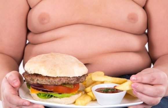 Fat kid capital of England revealed – find out where your area ranks