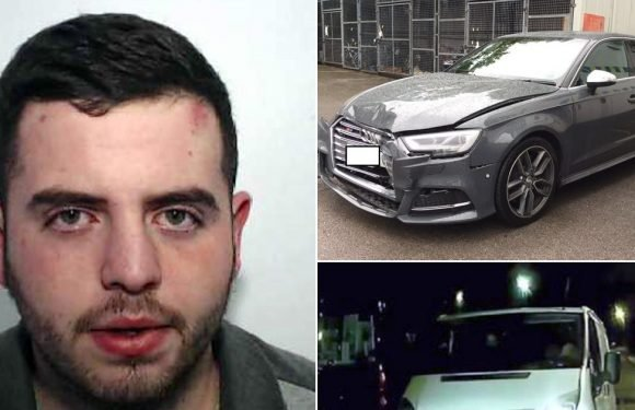 Thug jailed after hurting 2 cops by using stolen van 'as weapon' in 60mph chase