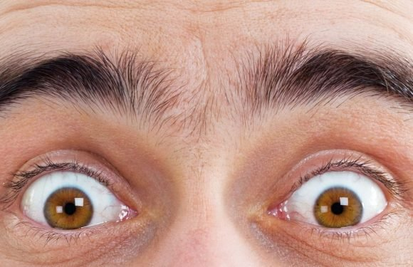Developing expressive eyebrows helped our early ancestors to survive