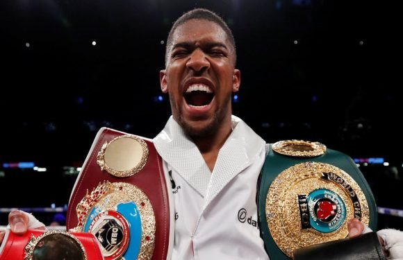 Anthony Joshua will inspire us to Commonwealth glory says Frazer Clarke