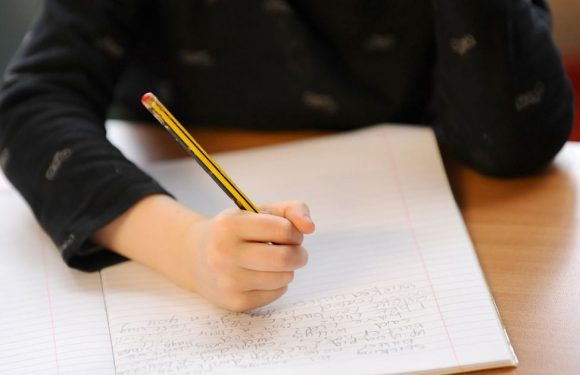 What to do if your child didn't get a place at the primary school you wanted