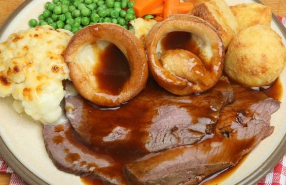 Vegan student writing dissertation on the 'cultural history of roast beef'
