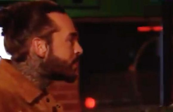 TOWIE fans in hysterics as Gatsby steals Pete Wicks' pizza during street bust-up