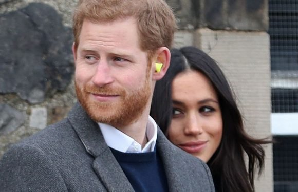 Top cop reveals challenge of keeping Harry and Meghan safe at their wedding