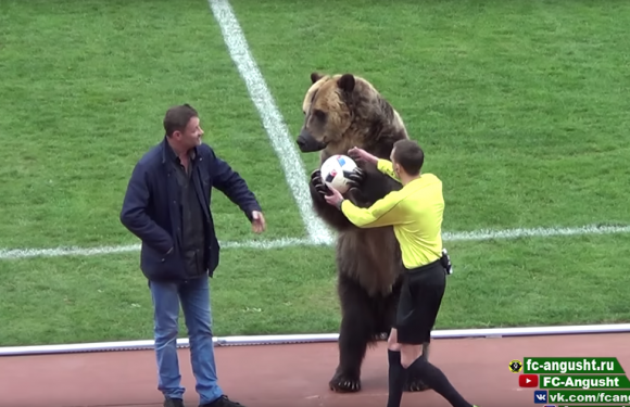 Russian football team blasted for using grizzly bear to deliver ball