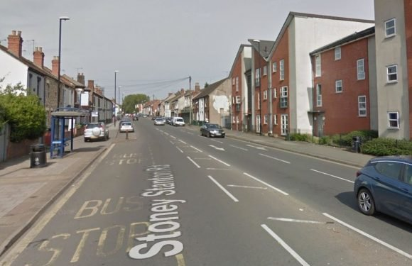 Toddler killed and mum left fighting for life after being hit by car