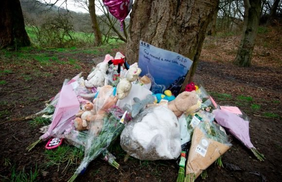 Police name baby girl found dead at beauty spot as struggle to find mum goes on
