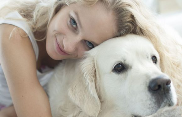 Dogs and humans more closely linked than previously thought, study claims