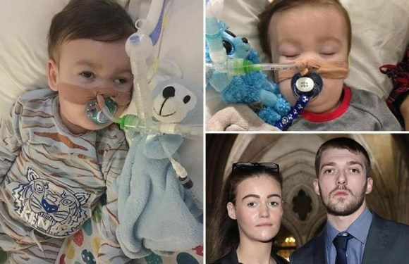 Alfie Evans' life support to end as High Court sets date hospital can stop keeping tragic tot alive