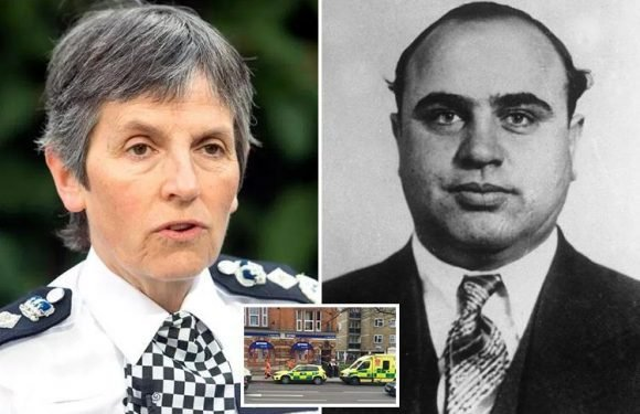 Scotland Yard chief Cressida Dick vows to use 'Al Capone' tactics to tackle London's murder surge