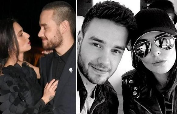 Liam Payne claims him and Cheryl are so 'normal' he would 'bore' fans by talking about their relationship