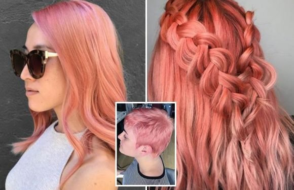 Peach hair is the fruity new beauty trend for summer… but would YOU try it?