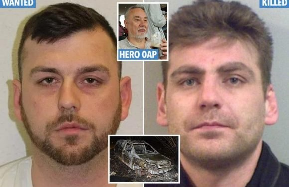 First pic of Hither Green suspect who fled after OAP Richard Osborn-Brooks stabbed burglar Henry Vincent to death – as 'getaway van' is found