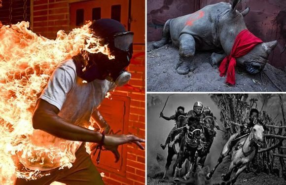 World Press Photo of the Year Awards 2018 winner captures powerful image of masked Venezuelan protester engulfed in flames