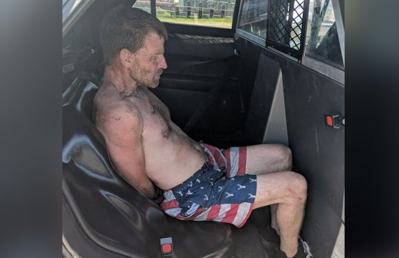 Man arrested for swiping beer truck, leading police on highway chase