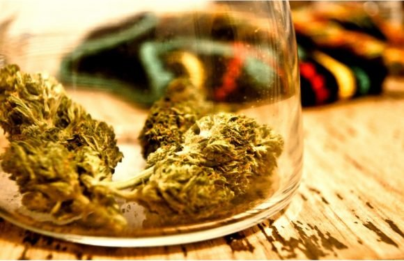 Everything You Need to Know About Buying and Smoking Recreational Marijuana in California