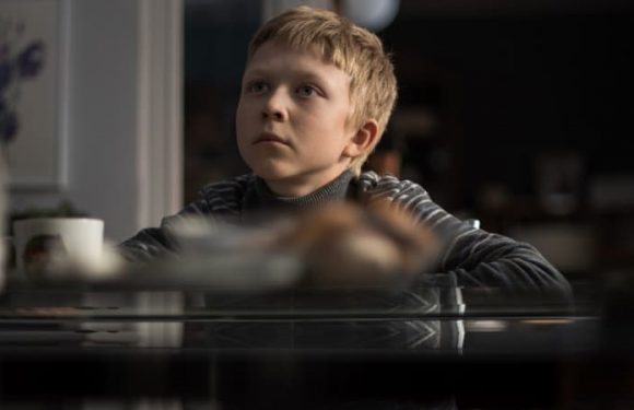 Loveless review: Cold comfort from this Russian master